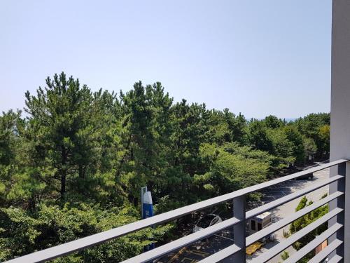 Suntree Hotel, Ciudad Metropolitana de Busan