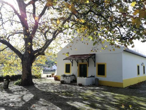Montejunto Villas - Casa do Plátano