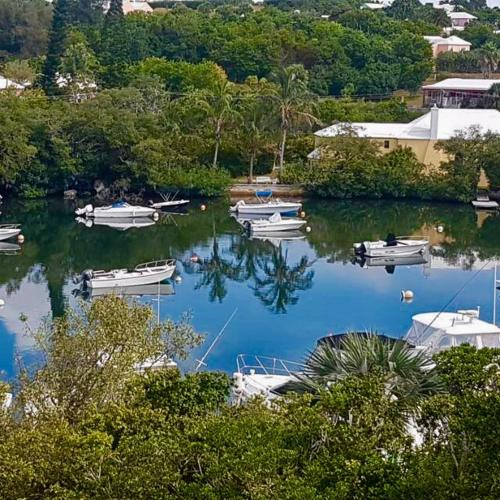 Waterfront home with pool near Horseshoe Bay Beach, Bermuda