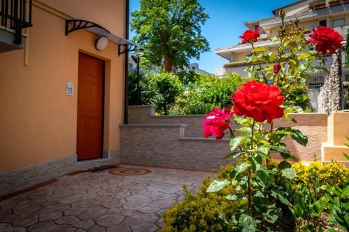 Antonella's House, Vasto
