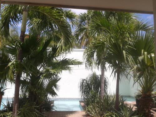 Time - Out : Tropical villa with pool, Willemstad