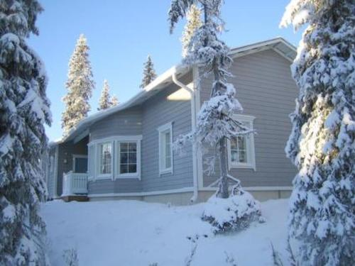 Holiday Home Vuosselinhovi b, Ruka