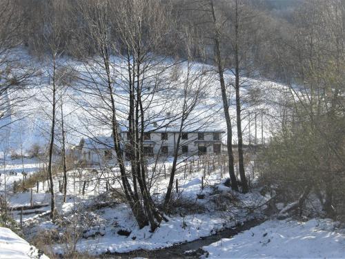 """Kopaonik Family House """"Vuković"""", Kopaonik"""