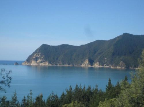 Waipiro Bay Paradise, Te Puia
