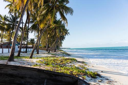 Palm Beach Zanzibar, Bwejuu