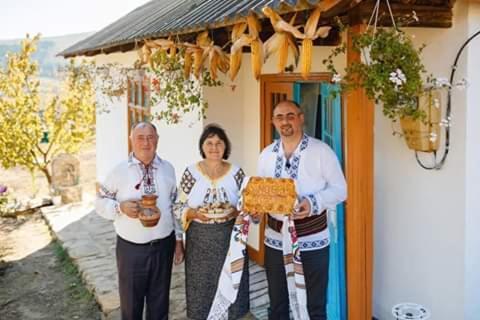 """Pensiunea turistica """"Casa rustica"""", Chişcăreni"""