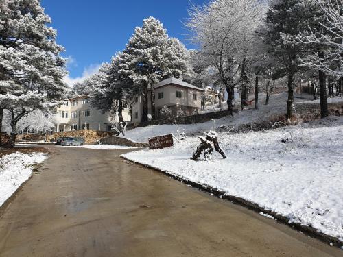 Shkreli Hotel & Camp