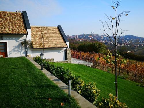 Eva's Vineyard, Tihany