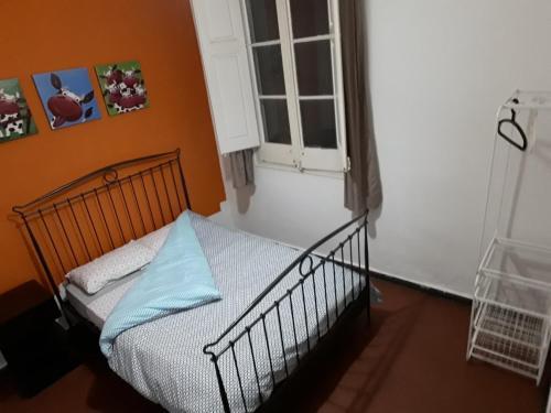 Hostel Halley