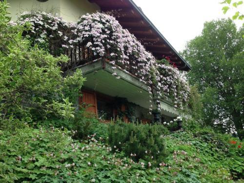 foto Il Giardino Dell'Artemisia (Jovencan)
