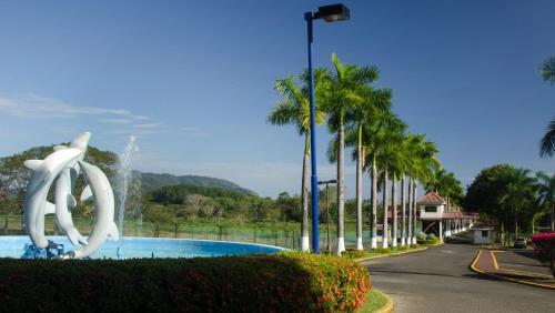 Viva Tambor, Puntarenas