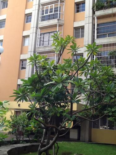 Apartamento, Caracas