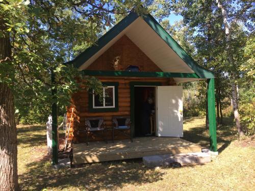 Millenium Tiny Log Cabin Acres
