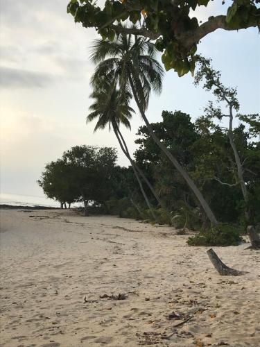 Apera Beach Front Bungalows, Tanna Island