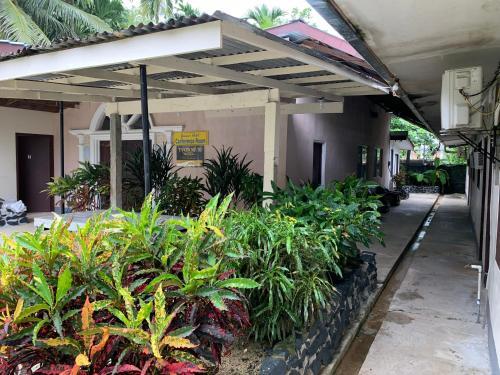 YVONNE'S HOTEL, Kolonia