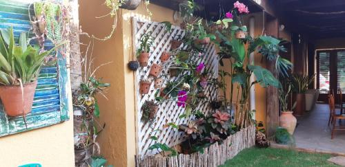 Varanda das Orquídeas Pousada e B&B