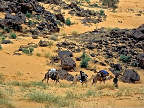 Caravanserail Rachid, Nouakchott