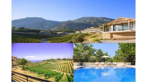 Gillham Luxury Boutique & Vineyard, Kyrenia