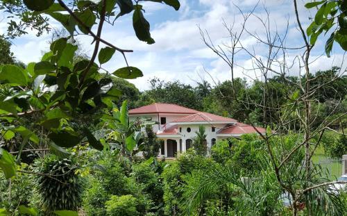 Villa Sulterra, Tambor