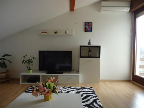 Apartments Arina