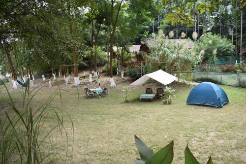 pobitora eco camp