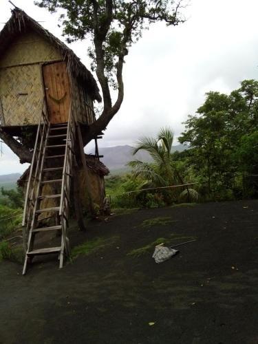 Volcano Highest Tree Adventure, Tanna Island