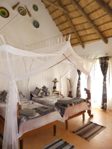Wild Dogs Lodge, Lusaka