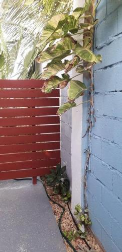 Brand new modern house, Palm Beach