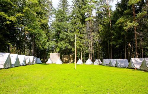 Forest Camping Mozirje, Mozirje