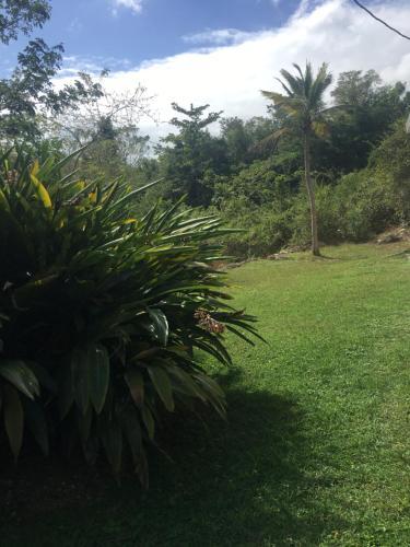 Jardin D'Eden Jamaica, Anchovy Station