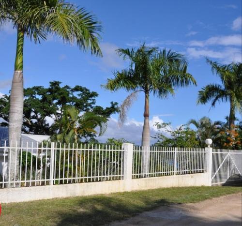 Tasariki next to lagoon, Port Vila