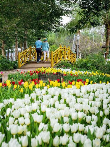 Queen House Ecopark, Hưng Yên
