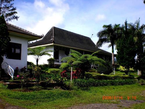 Padusan Resort