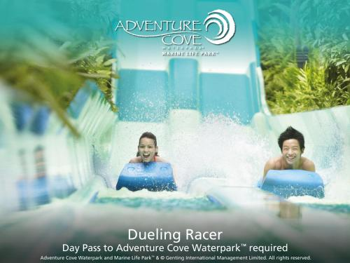Special Offer 4 - Deluxe Family Room with Adventure Cove Waterpark Tickets