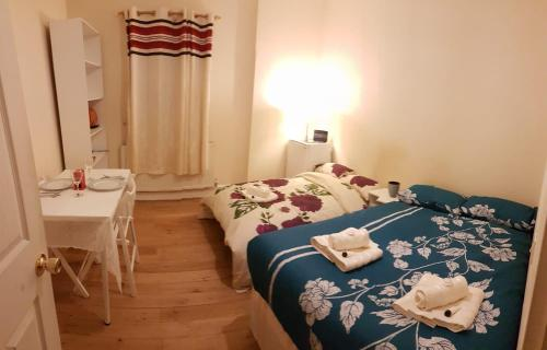 Large double room in Central london zone 1