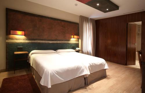 Habitación Doble - 1 o 2 camas Hotel Santa Cristina Petit Spa 2
