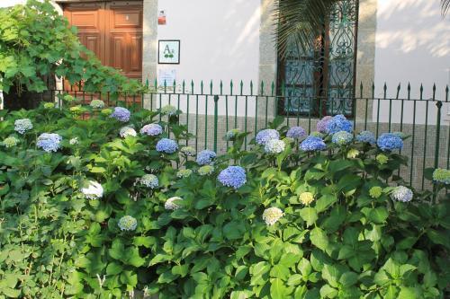 Casa jard n de la plata ba os de montemayor for Casa jardin de la plata