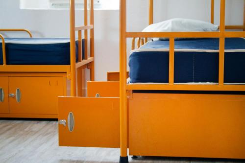 Single Bed in 12 Bed Female Dormitory