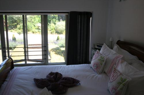 Large Double Room with Courtyard Garden View