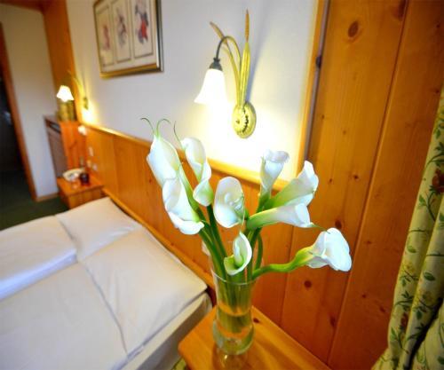 foto Hotel Nigritella (Selva di Cadore)