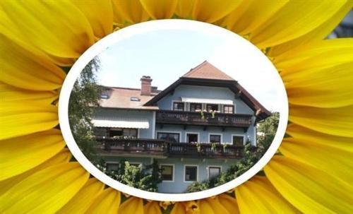Appartement Resch - Apartment mit 2 Schlafzimmern und Terrasse