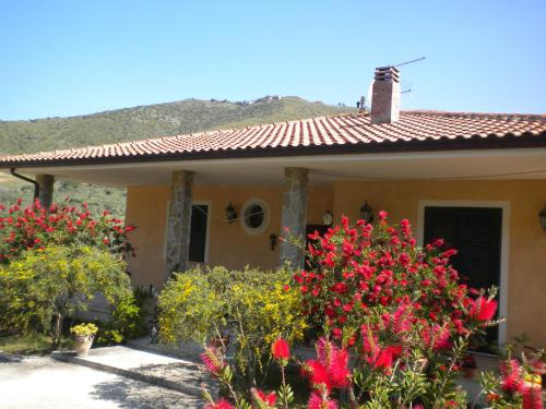 Country House La Casa In Campagna Bed & breakfast Montecorice in Italy
