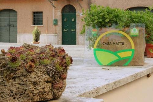 More about Agriturismo Casa Mattei