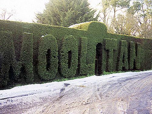 Mooltan Guest House
