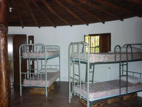 Bed in 12-Bed Dormitory Room with External Bathroom