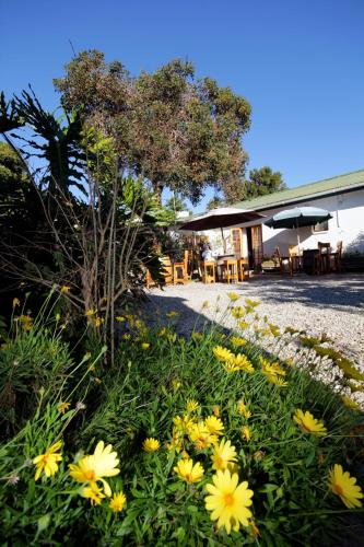 Picture of Nothando Backpackers Lodge