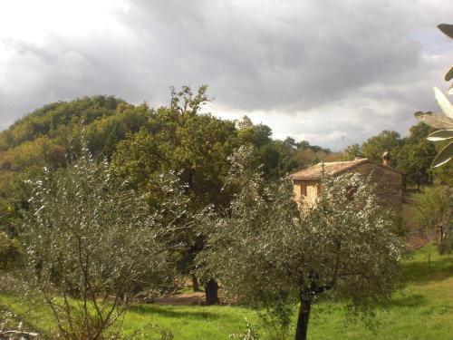 foto B&B Il Sentiero nel Bosco (Foligno)