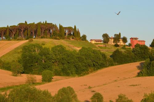 foto Azienda Agrituristica Il Sarale (Montone)