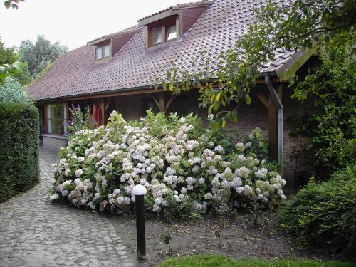 Holiday Home 't Westkanterhof