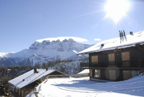 Picture of Swiss Mountain Holidays Champoussin